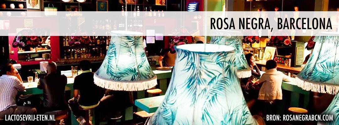Lactosevrij avondeten in Barcelona Rosa Negra
