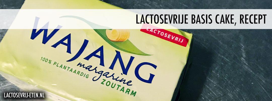 Recept lactosevrije cake Wajang