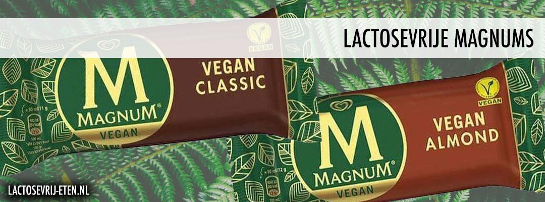 Lactosevrije Magnums