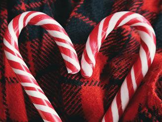 Lactosevrije producten voor Kerstmis