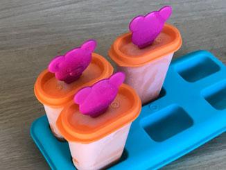 Lactosevrije yoghurt ijsjes Alpro